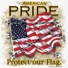 AMERICAN PRIDE PROTECT OUR FLAG